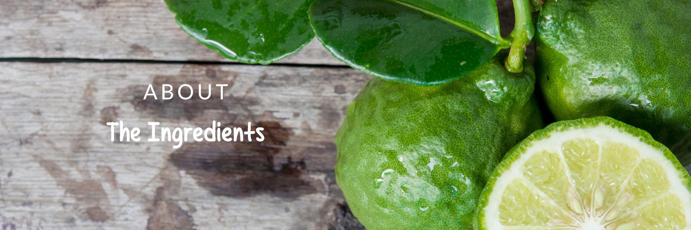 MLS_slider_ingredients_lime